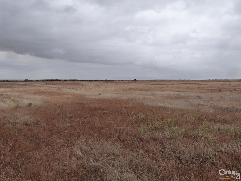 Quorn- Wilmington Road, Quorn - Land for Sale in Quorn