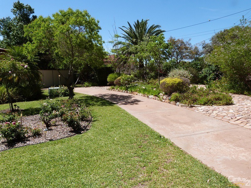 3 Willoughby Street , Stirling North - House for Sale in Stirling North
