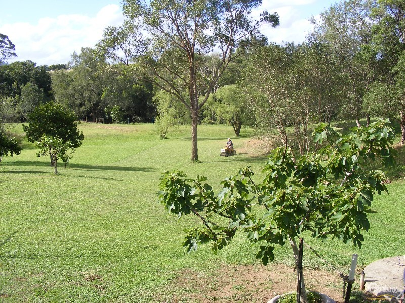 1-3 West Appletree Street, Wingham, Taree - House for Sale in Taree