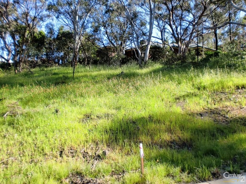 Lot 14 Greenville Close, Aberfoyle Park - Land for Sale in Aberfoyle Park