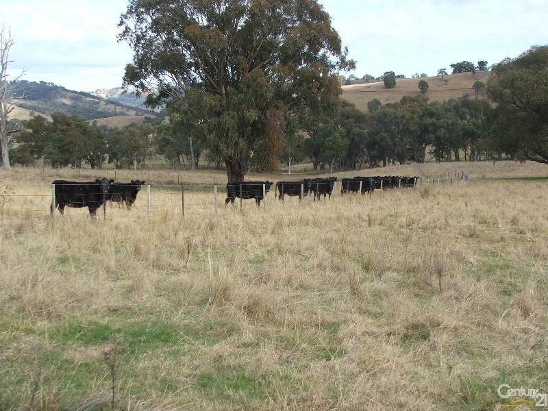 The Farm 830 Weabonga Road, Weabonga - Rural Livestock Property for Sale in Weabonga