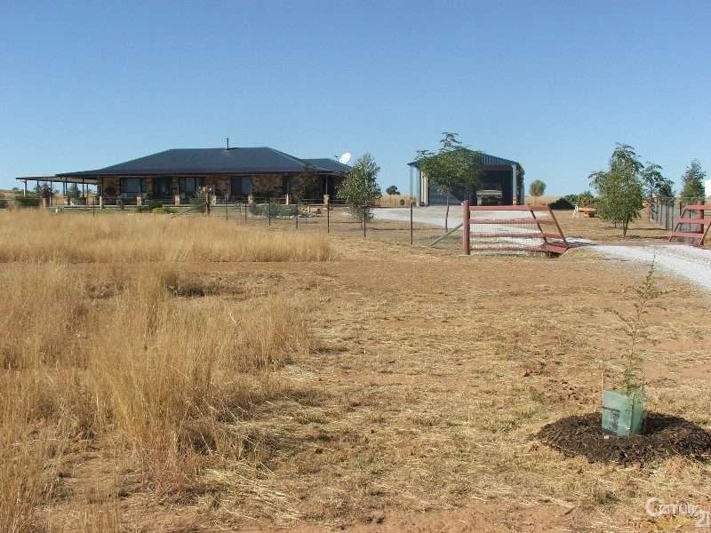 Utopia Bective Reserve Road, Tamworth - Rural Livestock Property for Sale in Tamworth