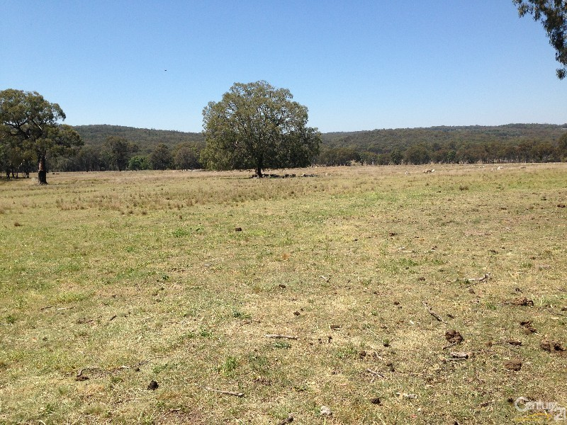 Rural Livestock Property for Sale in Bundarra NSW 2359