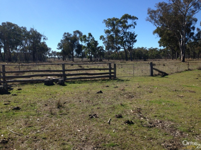 1015 Bundarra, Barraba - Rural Livestock Property for Sale in Barraba