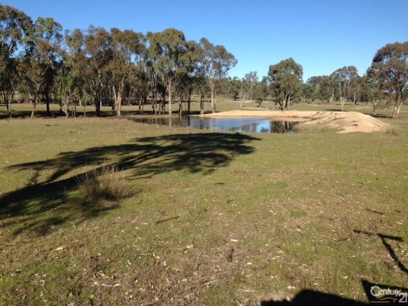 2909 Bonnay Linton Road, Bundarra - Rural Livestock Property for Sale in Bundarra