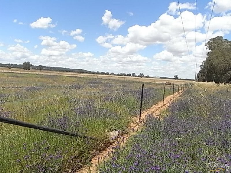 601 Military Road, Parkes - Land for Sale in Parkes