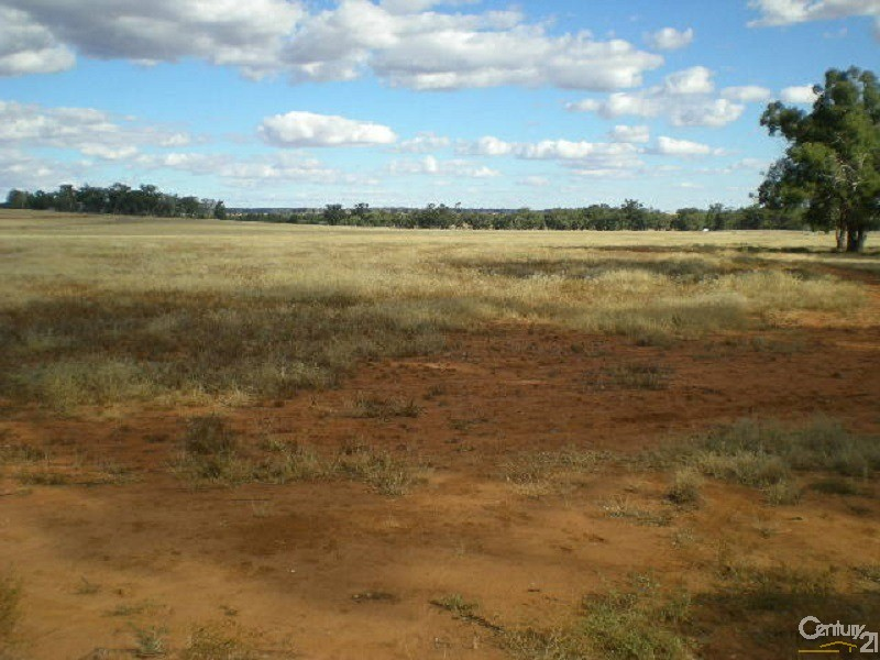 Lot 1 Eugowra Road, Parkes - Land for Sale in Parkes