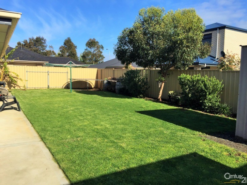 3 Ship Street, Seaford Meadows - House for Rent in Seaford Meadows