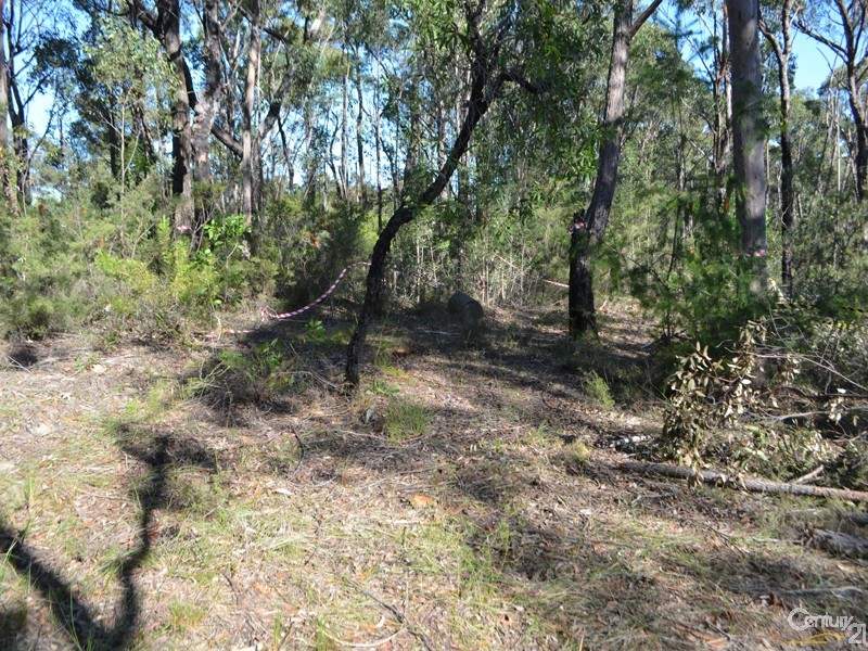 Lot 1-8 Spring Street, Springwood - Land for Sale in Springwood