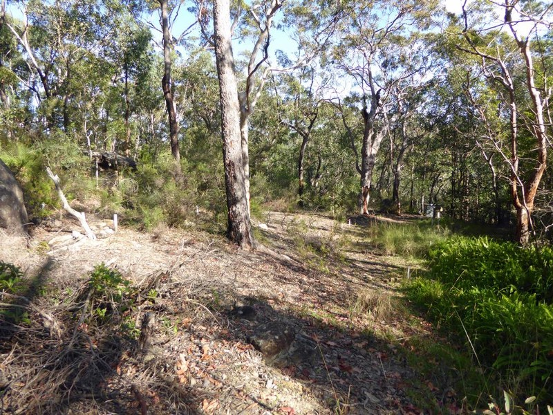 Land for Sale in Springwood NSW 2777