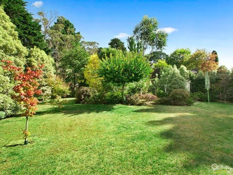 6 Yanko Ave, Wentworth Falls - House for Sale in Wentworth Falls