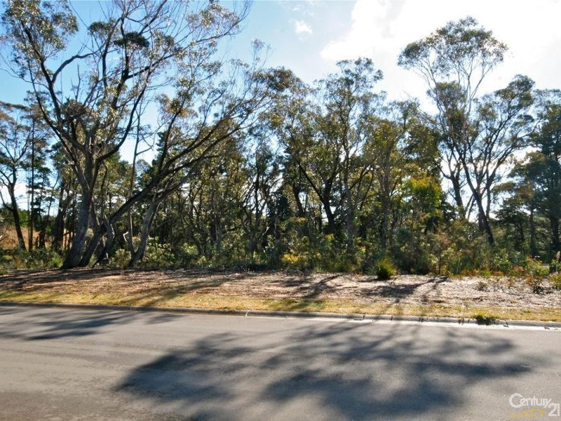 9 Chancery Lane, Wentworth Falls - Land for Sale in Wentworth Falls