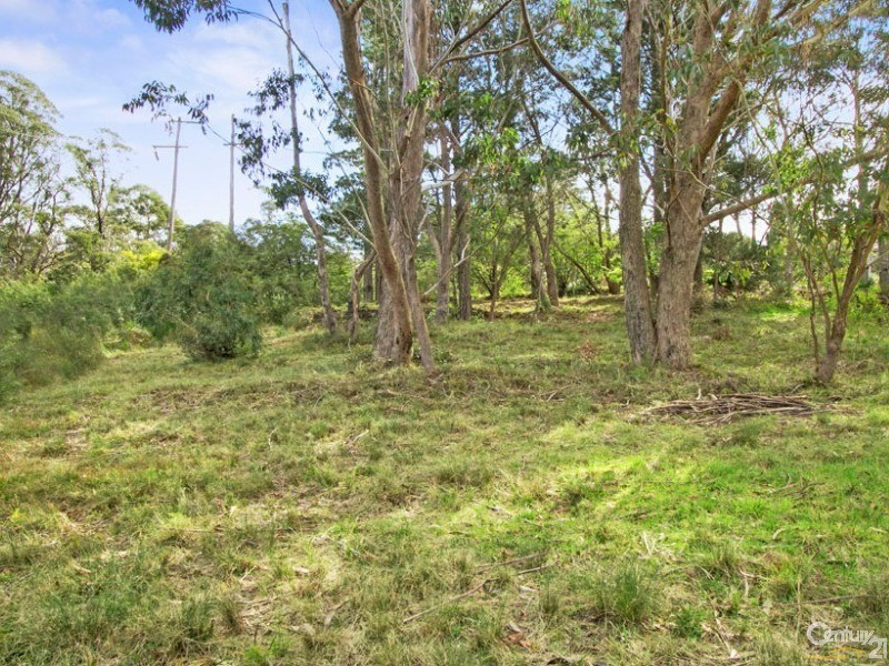 7 Yanko Ave, Wentworth Falls - Land for Sale in Wentworth Falls