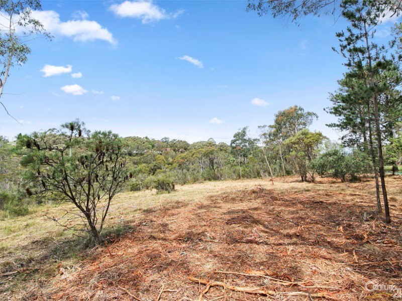 Land for Sale in Wentworth Falls NSW 2782