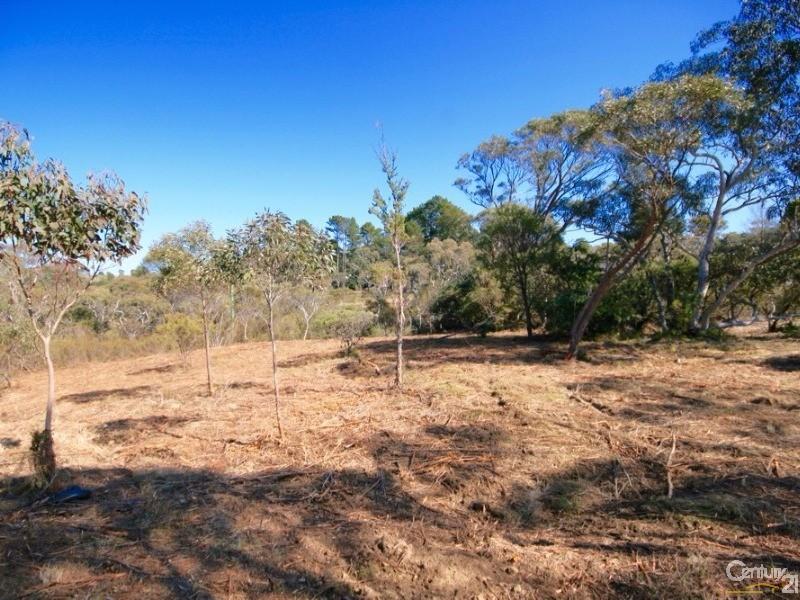 25 Sandbox Rd, Wentworth Falls - Land for Sale in Wentworth Falls