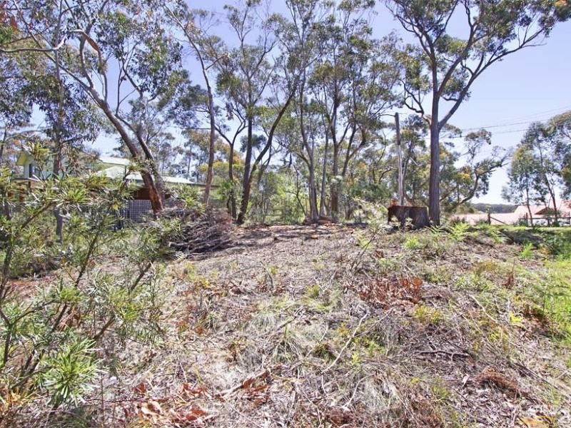 95 Henderson Rd, Wentworth Falls - Land for Sale in Wentworth Falls
