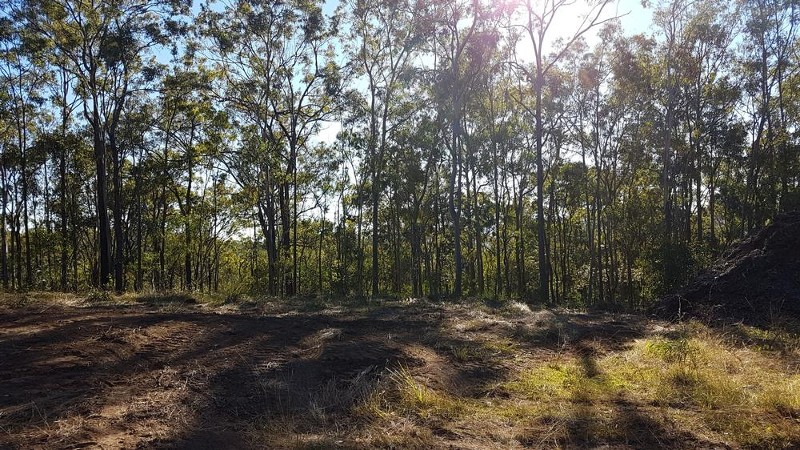 Land for Sale in Tamborine QLD 4270