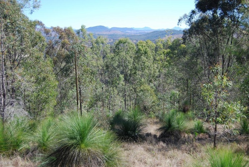 Land for Sale in Kooralbyn QLD 4285