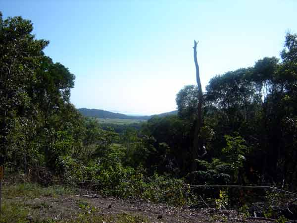 10 mins to Port Douglas - Land for Sale in Shannonvale QLD 4873