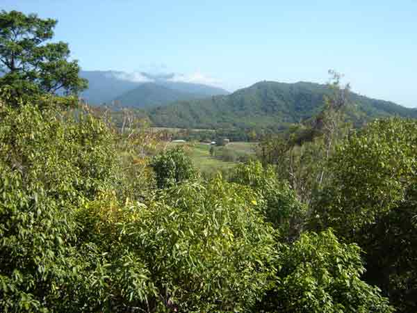 Great Views - Land for Sale in Shannonvale QLD 4873