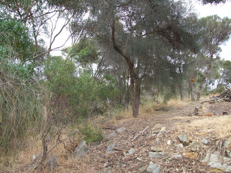 Lot 12 Bayview Road, American River - Land for Sale in American River