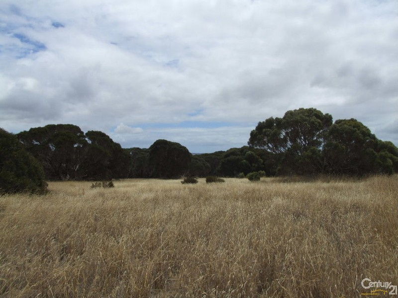 Lot 51 Birchmore Road, Macgillivray - Vacant Land for Sale - Rural Property in Macgillivray