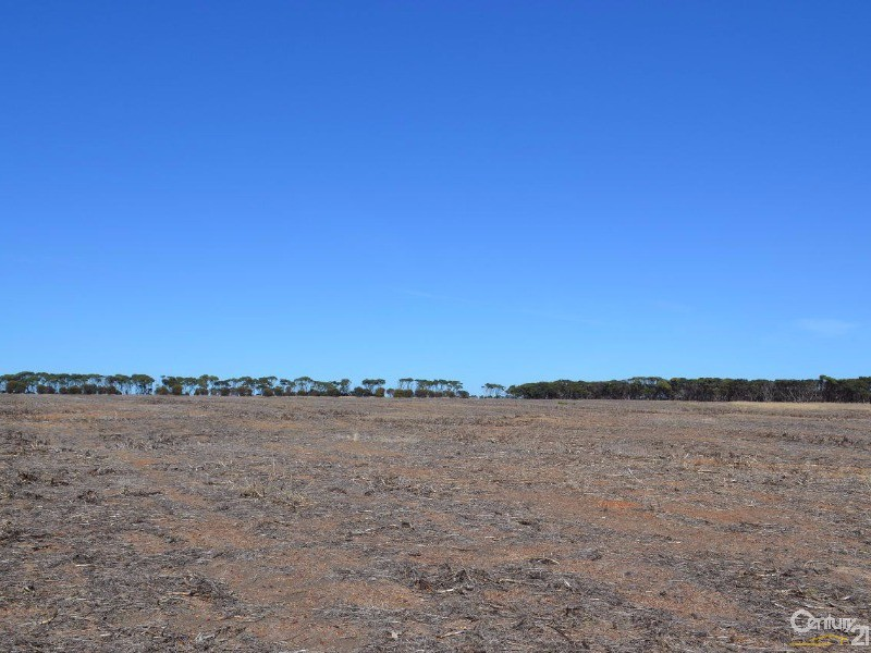 Lot 303 Min Oil Road, Haines - Property for Sale in Haines