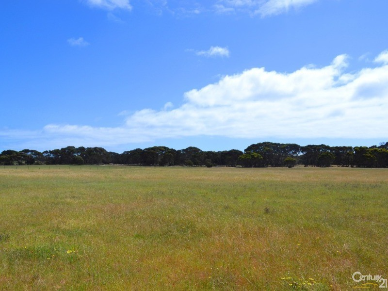 Lot 822 Rhynne Road, Bay Of Shoals - Rural Lifestyle Property for Sale in Bay Of Shoals