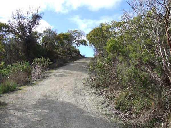 197 Government Road, Island Beach - Land for Sale in Island Beach