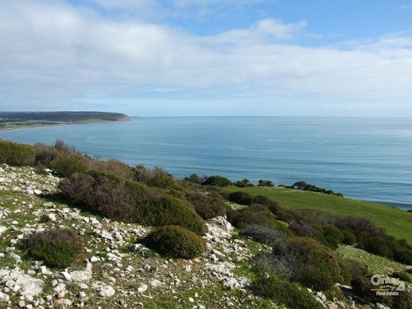 Section H Public Road Smiths Bay, Emu Bay - Boutique Income for Sale - Rural Property in Emu Bay
