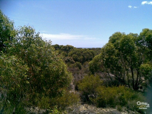 Lot 79 Playford Highway, Gosse - Rural Property for Sale in Gosse