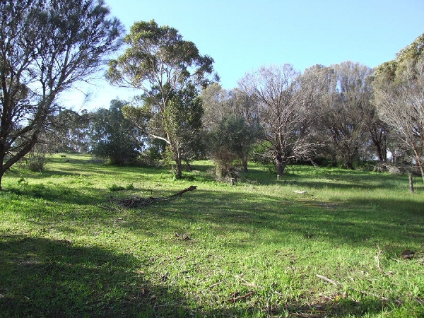 Lot 18 Thomas Road, American River - Land for Sale in American River