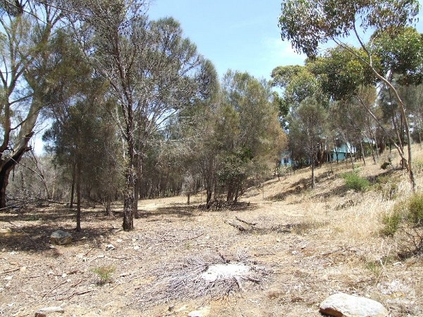 Lot 27 Failie Court, American River - Land for Sale in American River