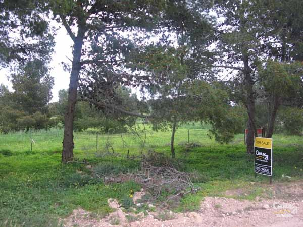 Lot 14 Tank Road, Moonta - Land for Sale in Moonta