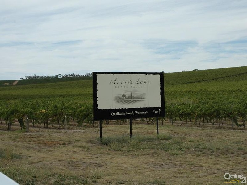 Great Winery & hosts for