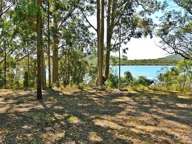 View from front of block - 12 Boronia Rd, Karuah - Land for Sale in Karuah
