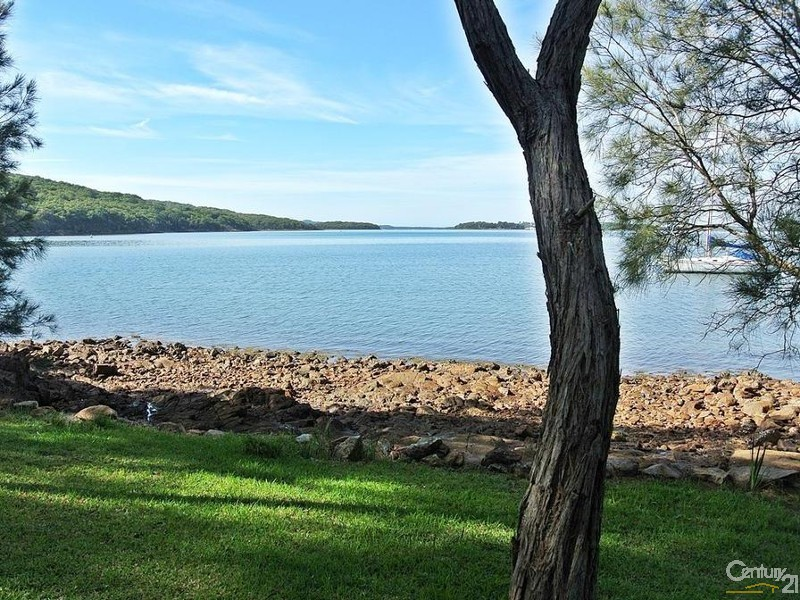 Level grassed foreshore - 44 Point Ct, North Arm Cove - House for Sale in North Arm Cove